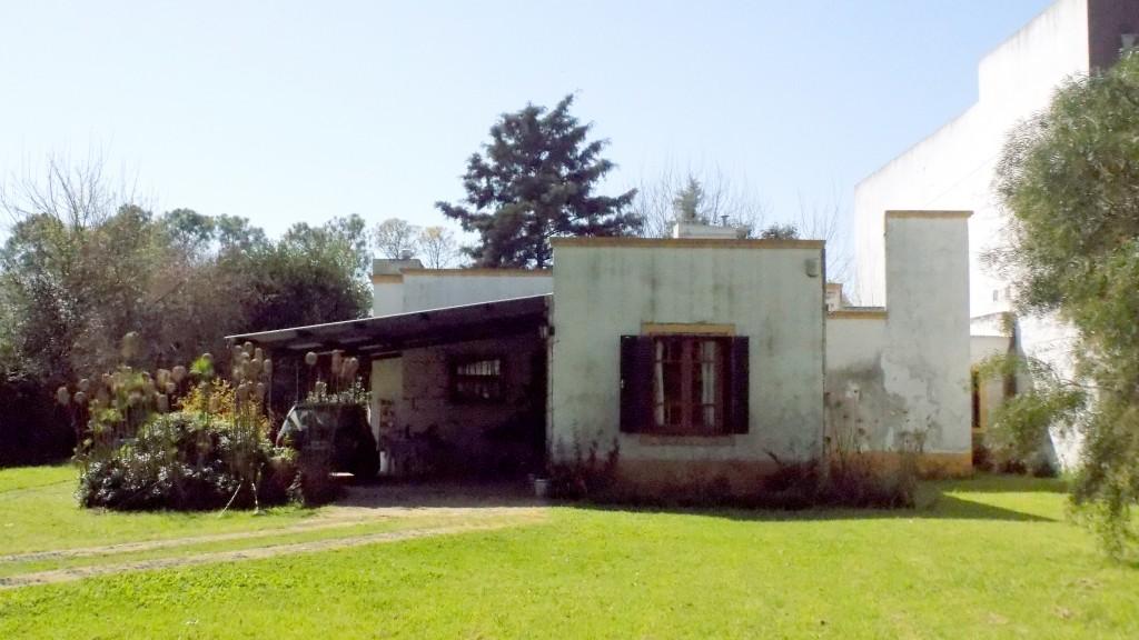 P DSCN2914